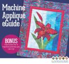 EMAILCOVER600AppliqueBasics_quiltbooksandbeyond